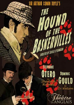 hound of the baskervilles essays