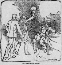 The-pittsburgh-press-1892-02-12-the-speckled-band-illus.jpg